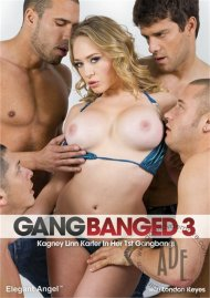 Gangbanged 3