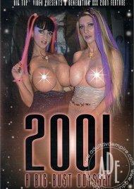 2001: A Big Bust Odyssey Porn Video