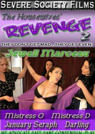 Housewives' Revenge 2, The Porn Video